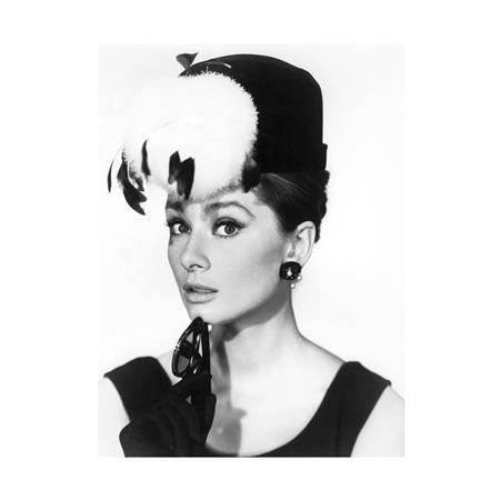 Audrey Hepburn (20 x 16\