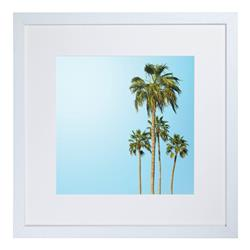 CA16 - Tropical Palm Trees 1
