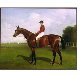 Racehorse 'Diamond Jubilee'