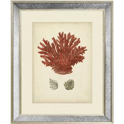 AC51 - Antique Red Coral III, 20 x 16