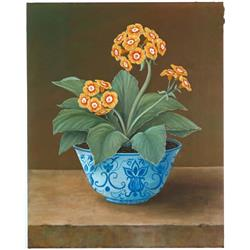 Yellow Auricular in blue and white bowl