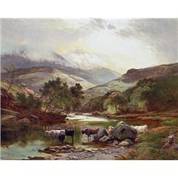 Scottish Highlands with cattle