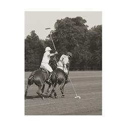 Polo Match in the Park 3 (20 x 16