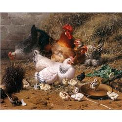 A family of chickens