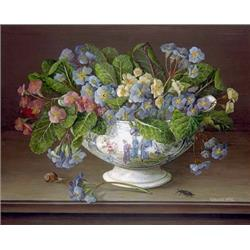 Primulas in China Vase