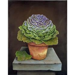Cabbage Flower Purple