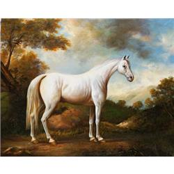 Grey horse in landscape