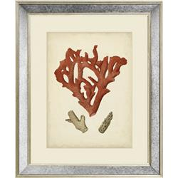 AC50 - Antique Red Coral II, 20 x 16