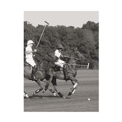 Polo Match in the Park 1 (20 x 16
