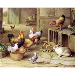 Chickens and Rabbits