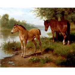 A mere and her foal