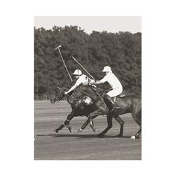 Polo Match in the Park 2 (20 x 16
